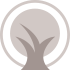 African Timber Agents grey icon