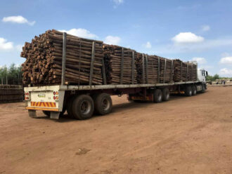 Freight load of poles